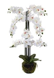 Kunstorchidee mit Erdballen 92 cm grün
