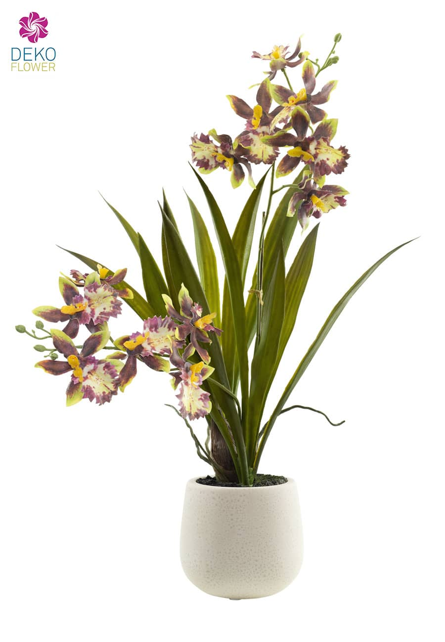 Kunstorchidee Oncidium 38 cm in Schale