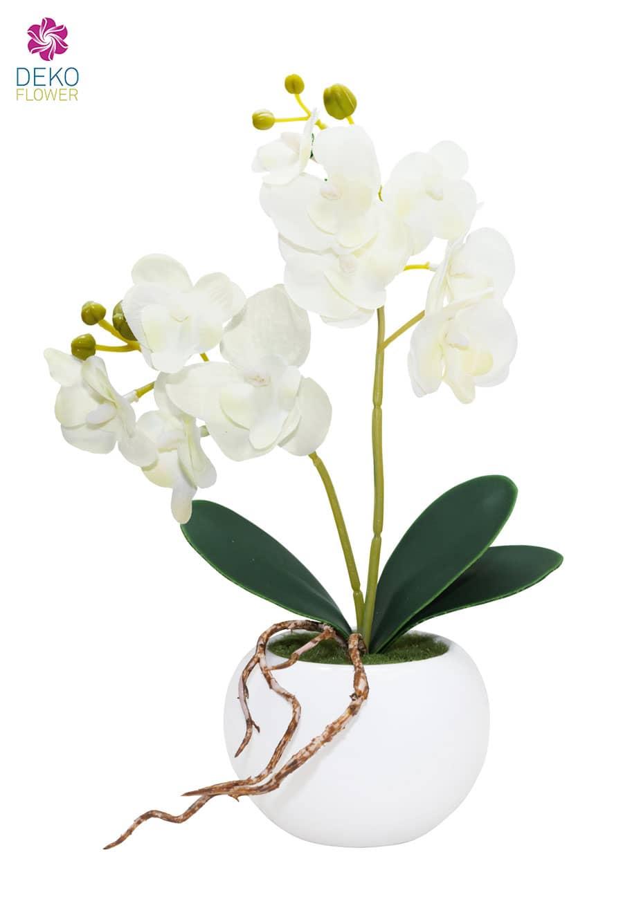 Kunstorchidee weiß 28 cm in Schale aus Keramik