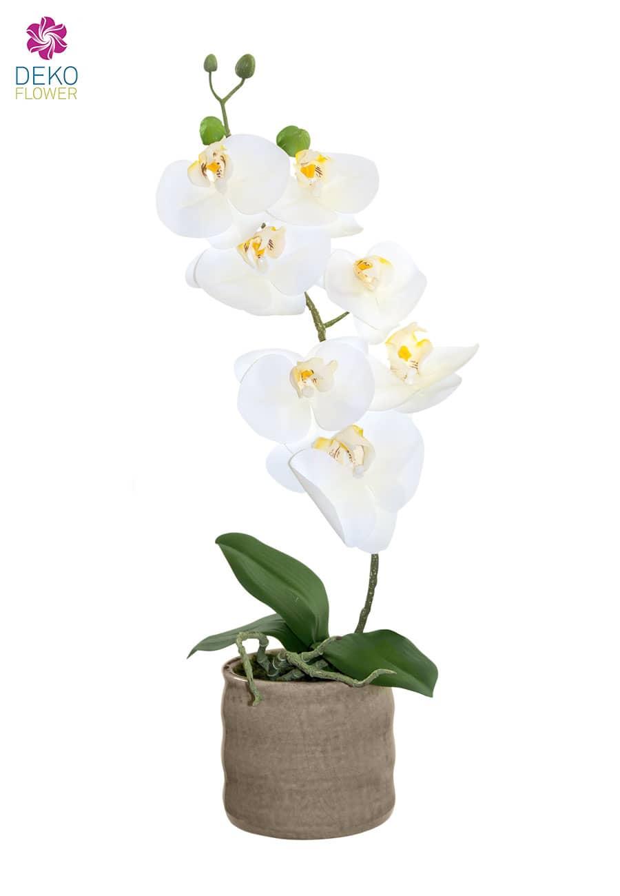 Kunstorchidee weiß 43 cm in Keramiktopf