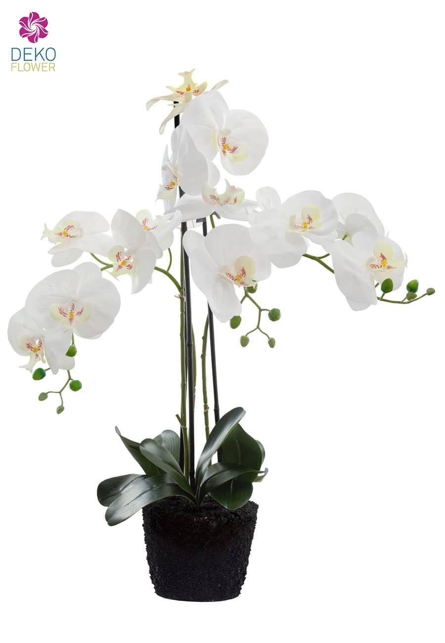 Kunstorchidee weiß 85 cm