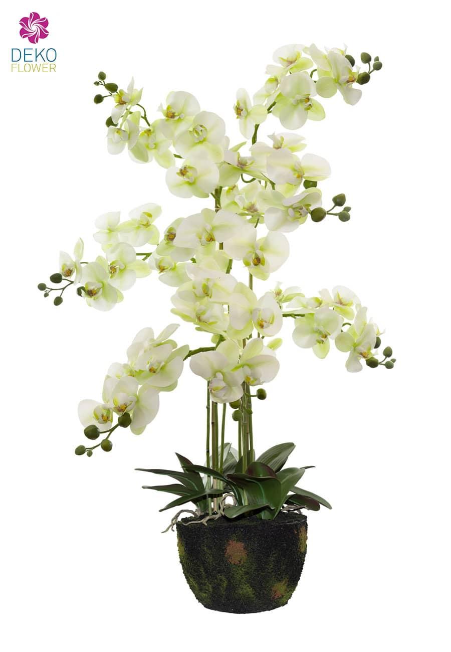 Kunstorchidee weiß grün 105 cm