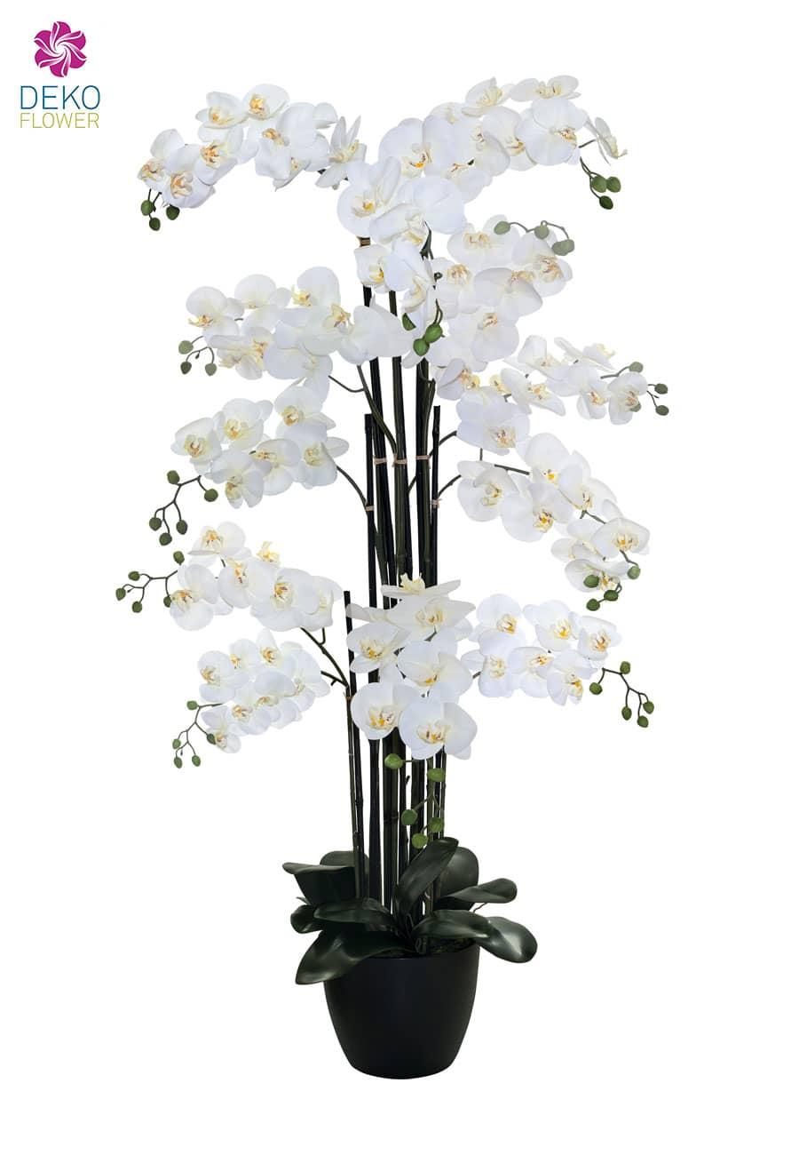 Kunstorchidee XXL weiß 145 cm