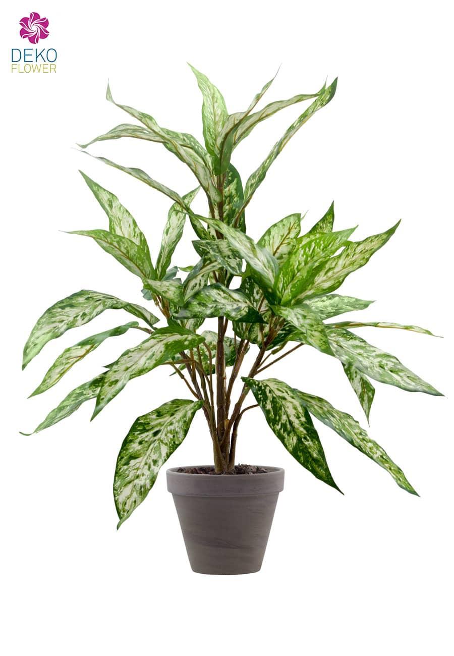 Künstliche Aglaonema Pflanze im Tontopf 60cm