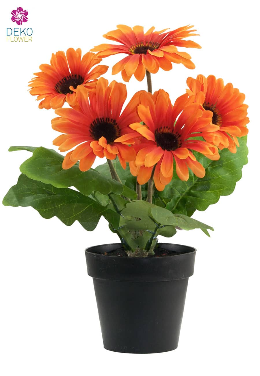 k nstliche gerbera topfpflanze orange 28 cm. Black Bedroom Furniture Sets. Home Design Ideas