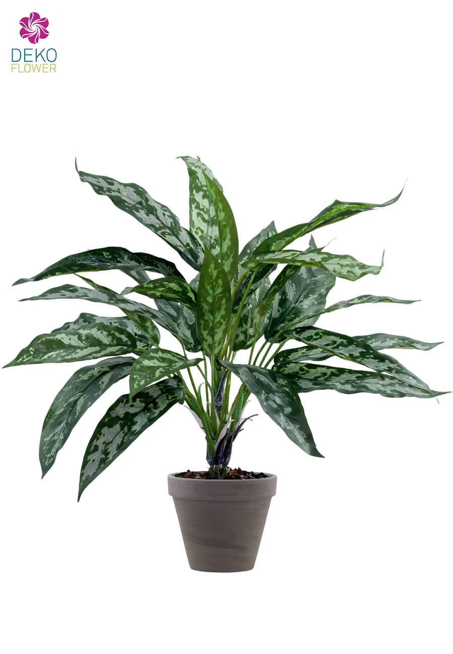 Kunstpflanze Silver Queen 47cm
