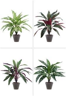 4er-Set Kunstpflanzen je 47cm
