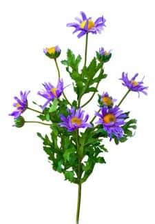 Margeriten Dekozweig lavendel 55 cm 3er Pack