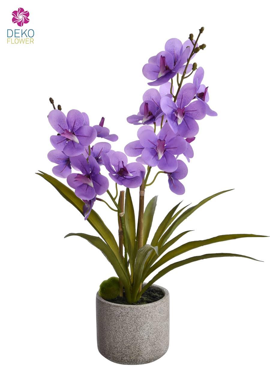 Orchidee »Ascocenda« künstlich 50 cm violett