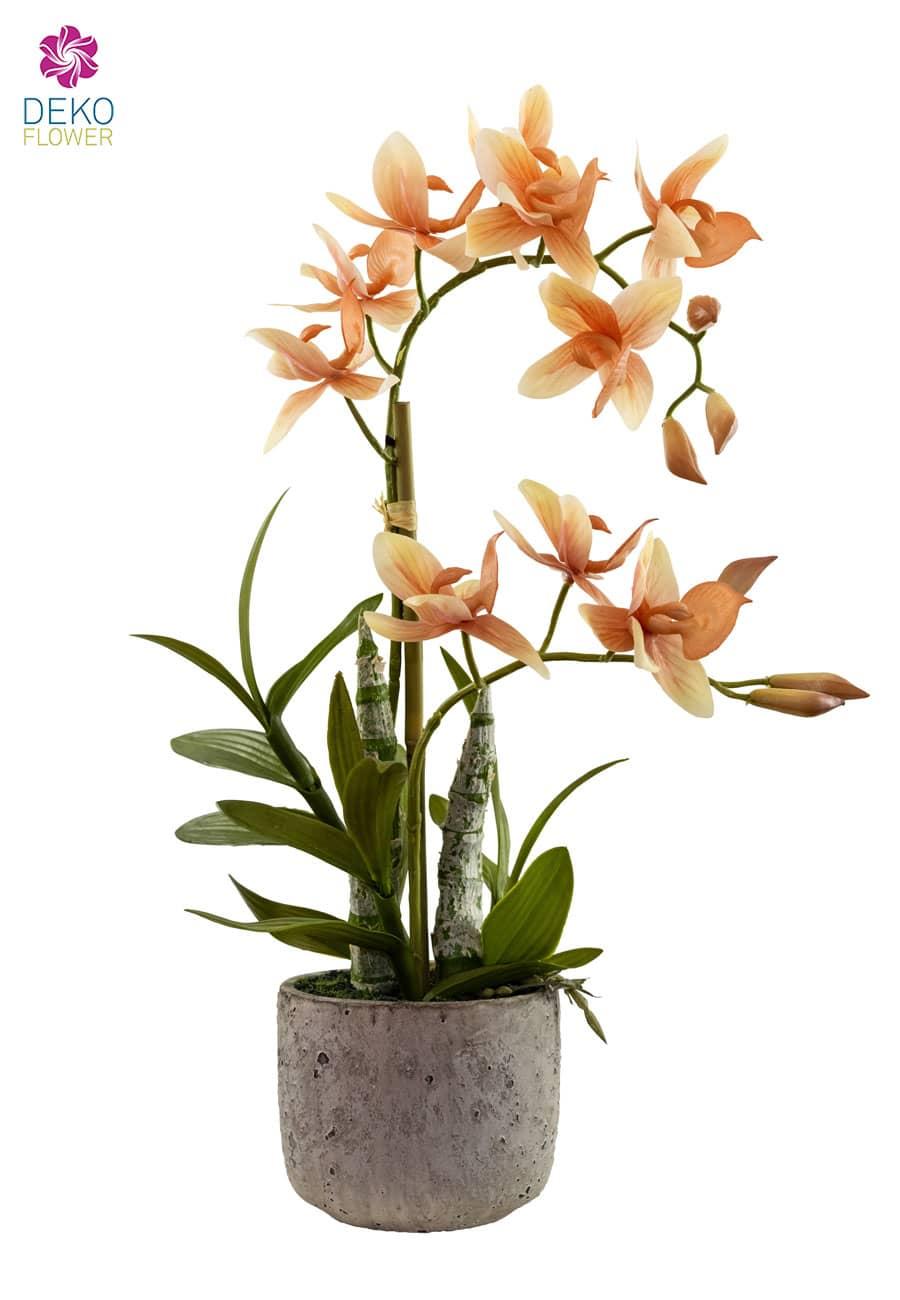 Orchidee »Cycnoches« künstlich 45 cm apricot