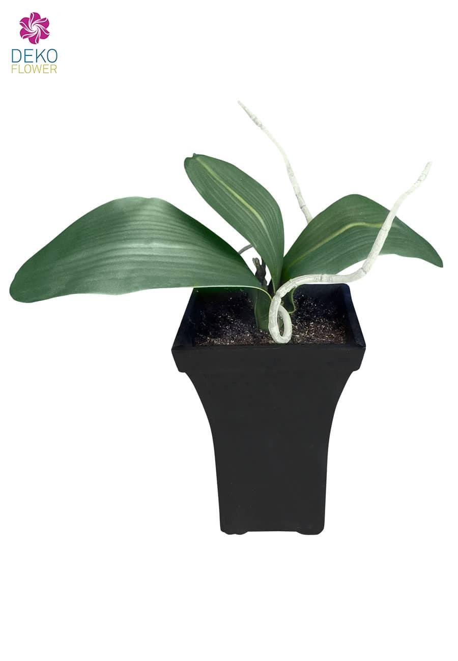 Künstliche Orchideenblätter getopft 30 cm