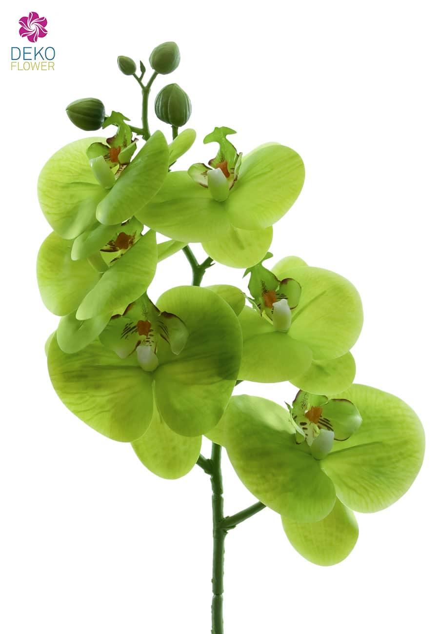Künstlicher Phalaenopsis Orchideenzweig gelbgrün 60 cm