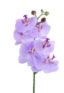 Künstlicher Phalaenopsis Orchideenzweig lila 60 cm