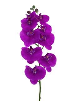Künstlicher Phalaenopsis Orchideenzweig magenta 100 cm