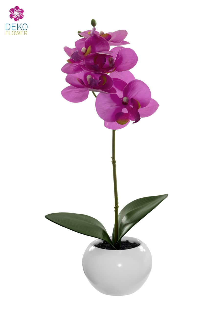 Pinke Orchidee 35 cm im Kugeltopf