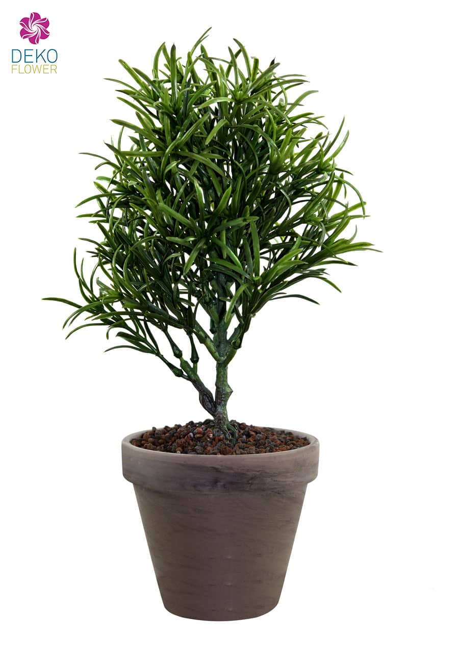 Podocarpus Kunstpflanze 33 cm