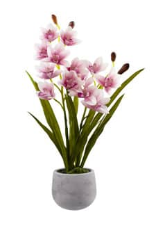 »Real Touch« Cymbidium Orchidee 69 cm rosa