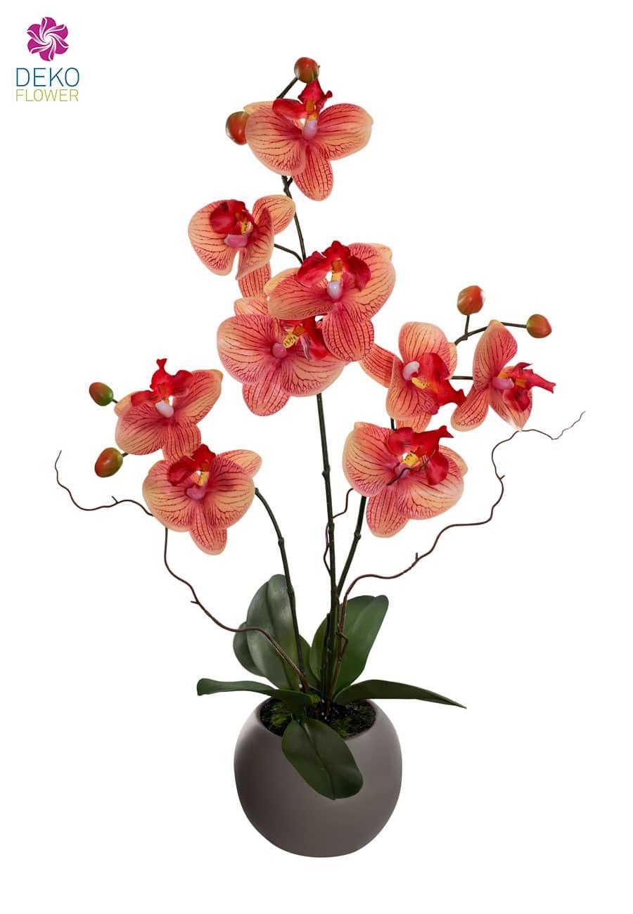 Real Touch Orchidee korallenrot 50 cm im Kübel