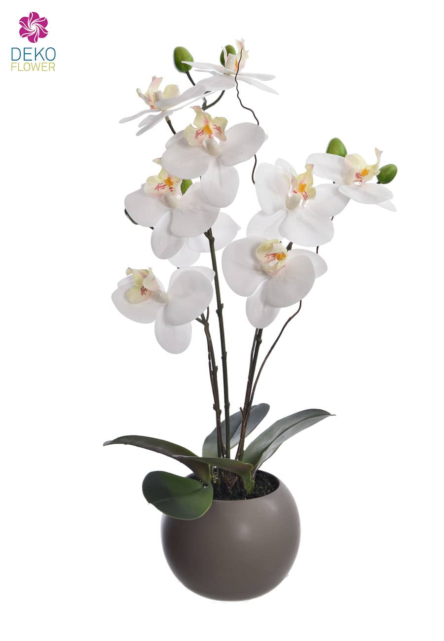 Real Touch Orchidee getopft weiß 50 cm