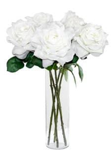 Künstliche Rose Caprice creme-weiß 49 cm 5er-Pack