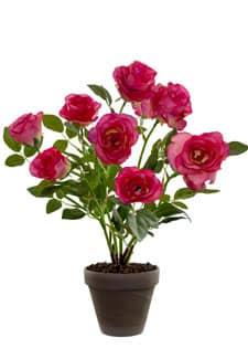 Rosenbusch 46 cm pinkrot