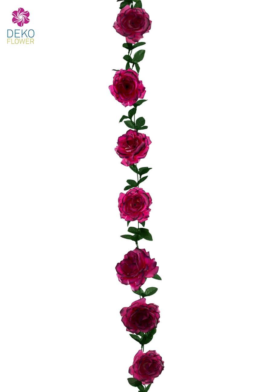 Rosenranke magenta pink 180 cm