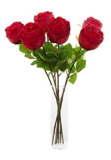 Rote Kunstrosen halboffen á 55 cm 6er Set