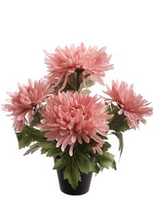 Spinnen Chrysanthemen Kunstpflanze rosa 31 cm