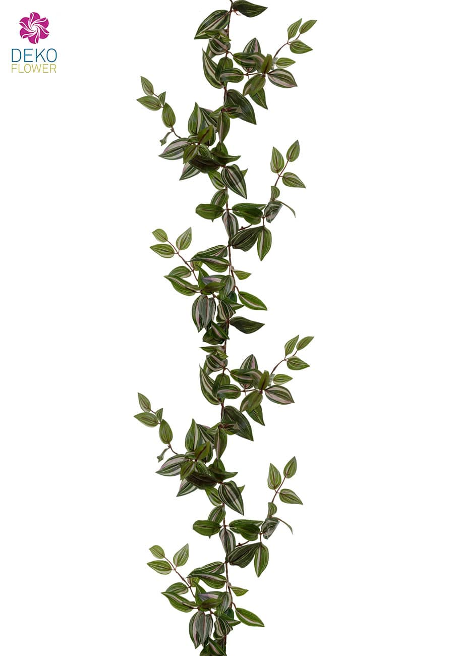 Tradeskantia Girlande 180 cm grün