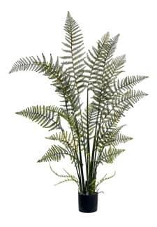 Waldfarn Kunstpflanze 117 cm