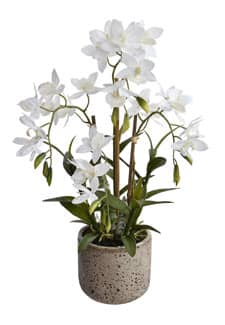 Weiße Orchidee »Real Touch« 51 cm getopft
