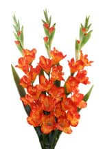 Gladiolen Kunstblumen orange 100 cm 3er Set