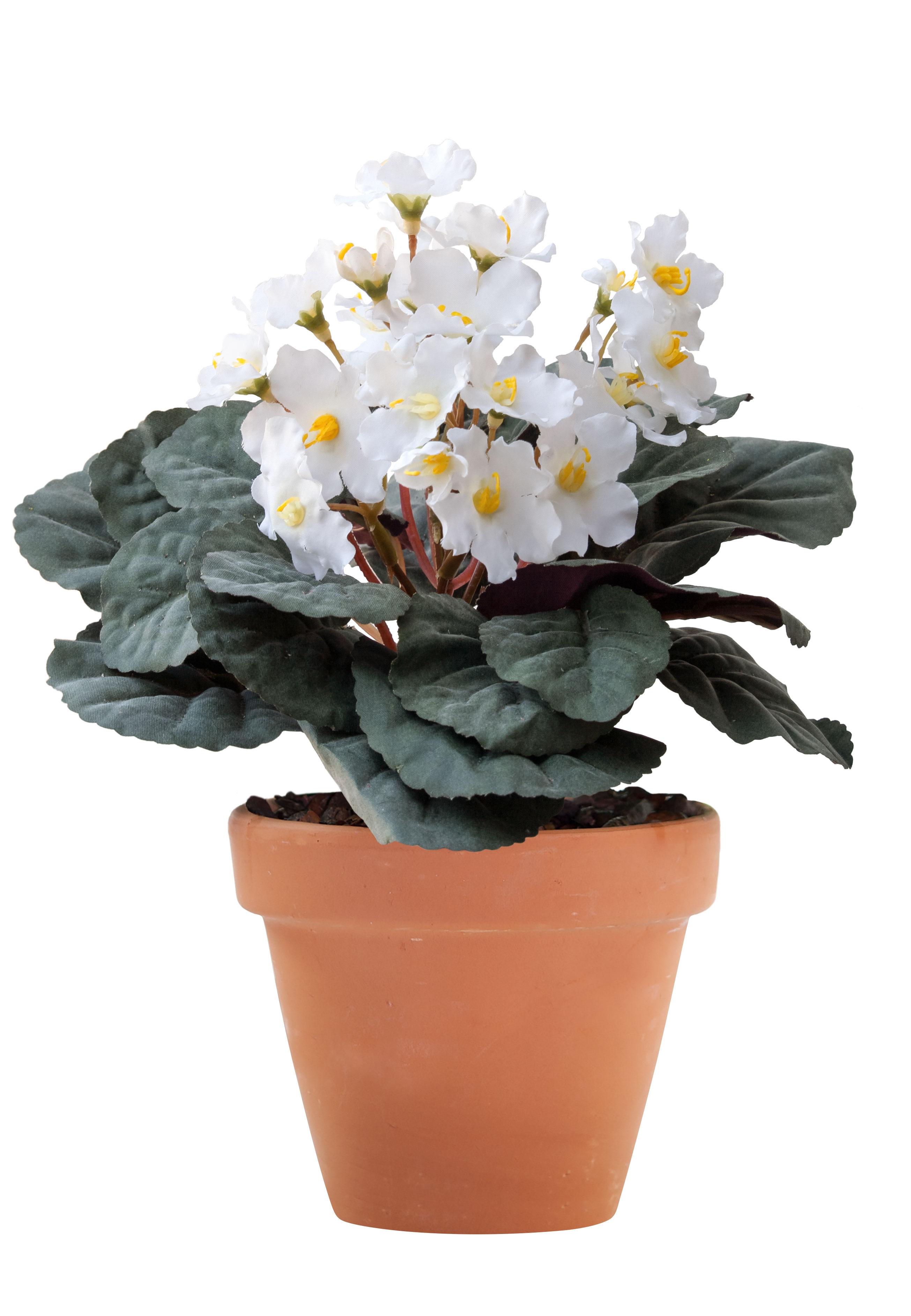 Kunstliche Balkonpflanzen Und Bluhende Kunstpflanzen